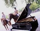 pianos-folies-2010-10121